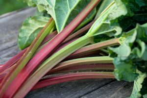 Time to Rally Hard for the Tasty Harbinger of Spring…Rhubarb!